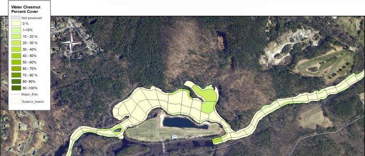 Chestnut Survey Map